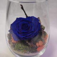 MR2 Miegančios rožės kompozicija